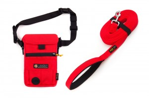 Zestaw Dog Bag & Training Leash